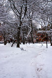 Boston Winter. Stock image of a snowing winter at Boston, Massachusetts, USA stock photos