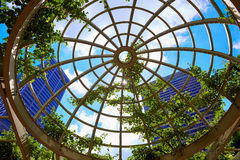 Boston-Wolkenkratzer von Norman Leventhal Park Stockfoto