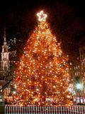 Bostons Weihnachtsbaum Stockfotos
