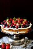 Bosvruchten cake Stock Afbeelding