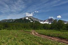 Bosweg de bergen van het Schiereiland van Kamchatka Stock Afbeeldingen