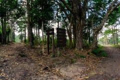 Boswegverbinding en pijnboomboom met houten teken Stock Foto's