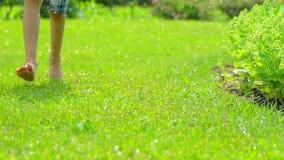 Bosy chłopiec bieg świeżym zielonej trawy zwolnionym tempem ma się dziecko Summrtime, lato, natura, szczęśliwy dzieciństwo zdjęcie wideo