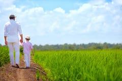 Bosy ojca i syna odprowadzenie przez ryżowego pola obrazy stock