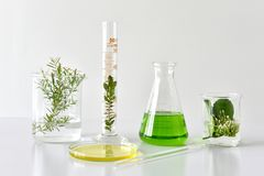 Botánica orgánica natural y cristalería científica, medicina alternativa de la hierba, productos de belleza naturales del cuidado imagenes de archivo