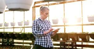 Botánico de sexo femenino que usa la calculadora en el invernadero almacen de video