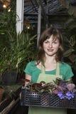 Botánico hermoso Carrying Crate Full de las plantas de la flor Fotos de archivo
