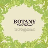 Botânica 100 por cento natural Foto de Stock Royalty Free