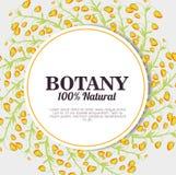 Botânica 100 por cento natural Imagem de Stock