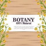 Botânica 100 por cento natural Fotografia de Stock