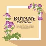 Botânica 100 por cento natural Imagens de Stock