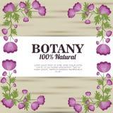 Botânica 100 por cento natural Imagem de Stock Royalty Free