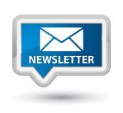 Botão azul principal da bandeira do boletim de notícias Fotografia de Stock Royalty Free