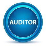 Botão de Eyeball Blue Round do auditor ilustração royalty free