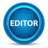 Botão de Eyeball Blue Round do editor ilustração stock