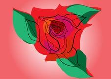Botão de Rosa com folhas Imagem de Stock