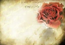 Botão de Rosa - estilo retro Foto de Stock