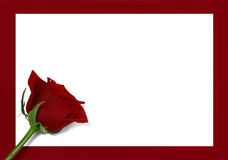 Botão de Rosa no papel Fotografia de Stock Royalty Free