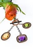 Botão de uma rosa Fotografia de Stock Royalty Free