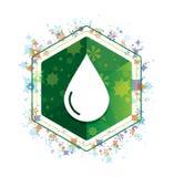 Botão floral do hexágono do verde do teste padrão das plantas do ícone da gota da água ilustração do vetor
