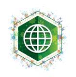 Botão floral do hexágono do verde do teste padrão das plantas do ícone do mundo ilustração do vetor