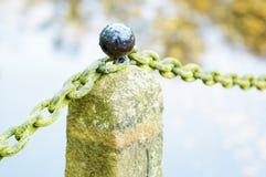 Botão na pedra fotografia de stock royalty free