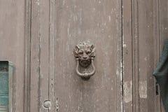 Botão principal do leão - puxador da porta imagem de stock