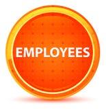Botão redondo alaranjado natural dos empregados ilustração do vetor
