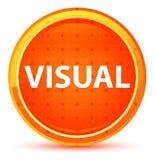 Botão redondo alaranjado natural visual ilustração stock