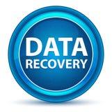 Botão redondo azul do globo ocular da recuperação dos dados ilustração royalty free