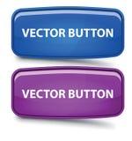 Botón de cristal rectangular del vector Fotos de archivo
