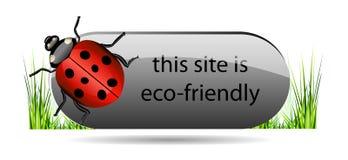 Botón de Eco con la mariquita y la hierba verde. Imagen de archivo libre de regalías