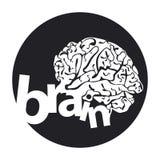 Botón del cerebro humano Imagen de archivo libre de regalías