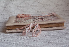 Botón del rosa del cuaderno del vintage Imagen de archivo