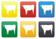 Botón del Web de la vaca Fotografía de archivo