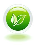 Botón del Web del Internet de la ecología Fotografía de archivo libre de regalías