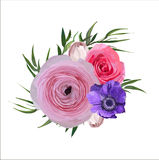 Botón floral de Rose Ranunculus Flowers del jardín del rosa del vintage de la flor Foto de archivo