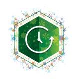 Botón floral del hexágono del verde del modelo de las plantas del icono de la historia ilustración del vector