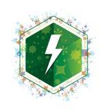 Botón floral del hexágono del verde del modelo de las plantas del icono del rayo ilustración del vector
