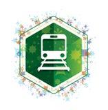 Botón floral del hexágono del verde del modelo de las plantas del icono del tren ilustración del vector