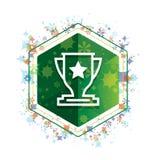 Botón floral del hexágono del verde del modelo de las plantas del icono del trofeo stock de ilustración