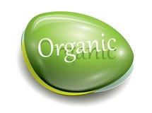 Botón orgánico verde Foto de archivo libre de regalías
