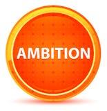 Botón redondo anaranjado natural de la ambición libre illustration