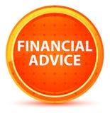 Botón redondo anaranjado natural del consejo financiero ilustración del vector