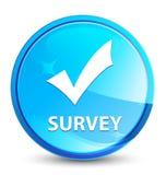 Botón redondo azul natural del chapoteo de la encuesta (valide el icono) libre illustration