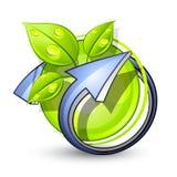 Botón verde del eco Imagenes de archivo