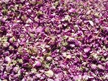 Botões de Rosa em uma feira marroquina Fotografia de Stock Royalty Free