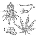 Botões, folhas, garrafa, cigarros e tubulação da marijuana para fumar ilustração do vetor
