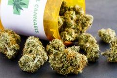 Botões médicos da marijuana no fundo preto Fotografia de Stock Royalty Free