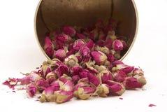 Botões secados das rosas, tendo um bom sono dos bancos Imagens de Stock